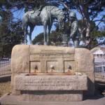 Port_Elizabeth_Horse_Memorial