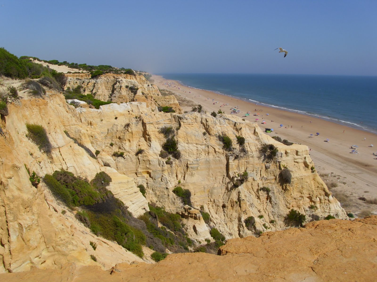 Playa del Parador, Moguer.