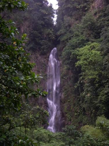 ¿En busca de un discreto paraíso natural en el Caribe? Dominica, en las islas de Barlovento 5