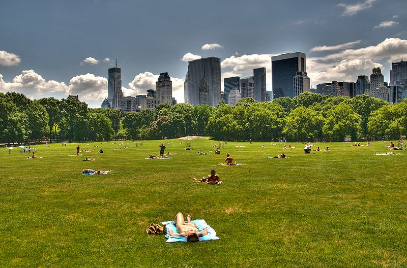 Los 10 lugares imprescindibles de Nueva York 13