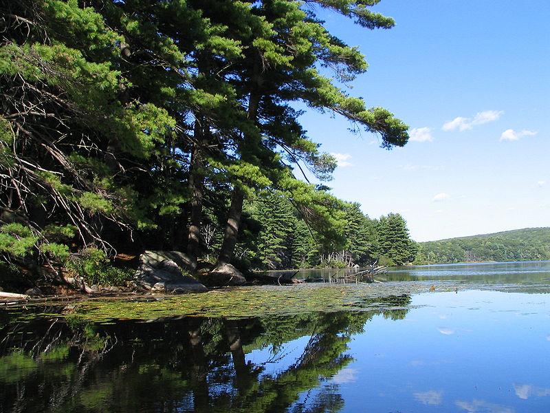 Lago Kanawauke
