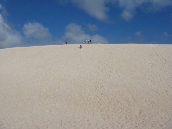 800px-Australia_kangaroo_island_litte_sahara