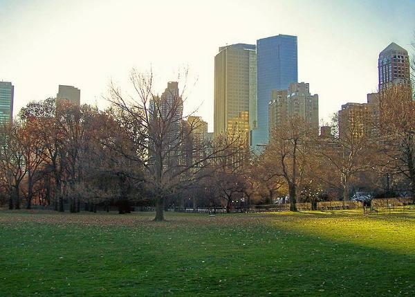 800px-New_York's_Central_Park,_Southwest