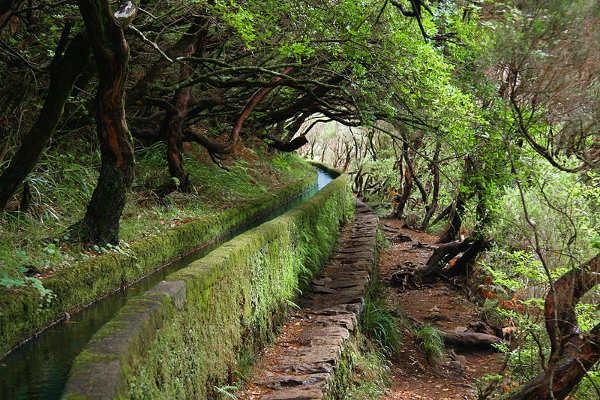 Guía de viajes a Madeira (V). Siete excursiones desde Funchal 6