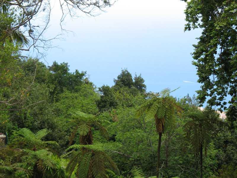 Guía de viajes a Madeira (V). Siete excursiones desde Funchal 5