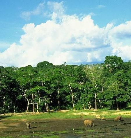 Bienes naturales y mixtos 2012, Patrimonio de la Humanidad, Unesco