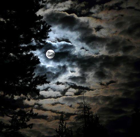 Una noche de Halloween