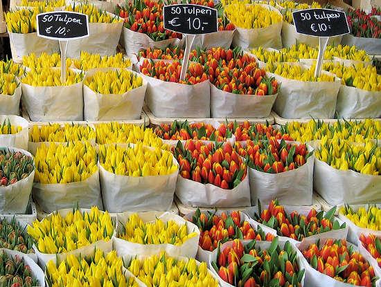 Tienda de tulipanes, Bloemenmarkt