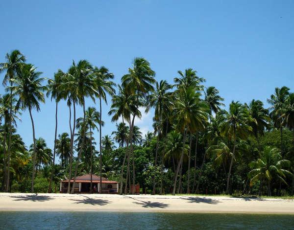 Praia dos Carneiros, Tamandaré, Brasil