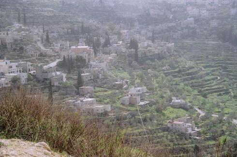 Viñedos y olivares de Battir, Palestina, Patrimonio de la Humanidad