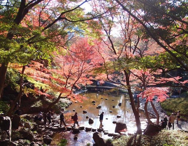 Jardines de Korakuen, Koishikawa