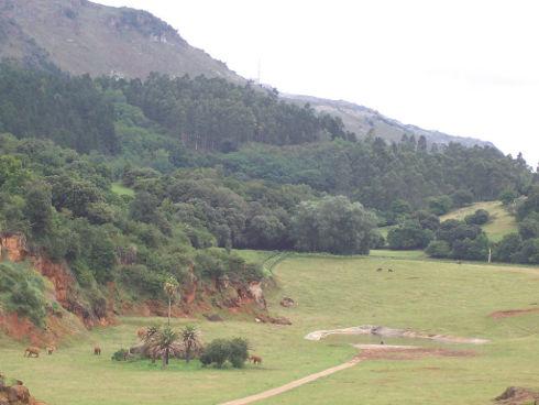 Reserva Natural de Cabárceno, Cantabria, España