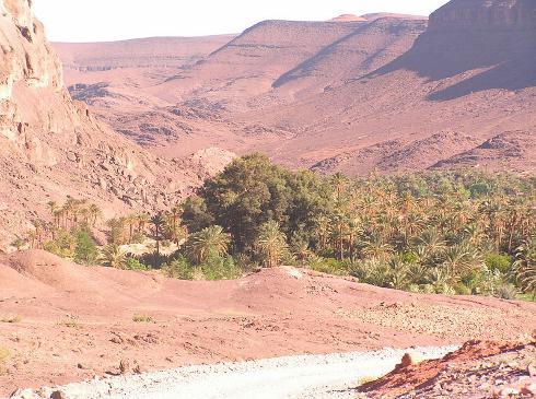 Oasis de Fint, cerca de Ouarzazate, Marruecos